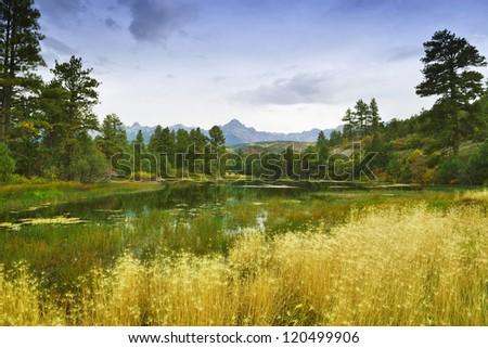 valley with golden and green trees in colorado during fall - stock photo