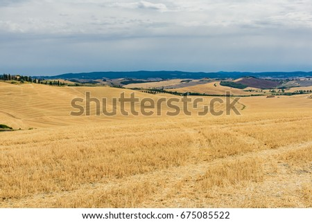 Valleys and hills in the Tuscan countryside in summer