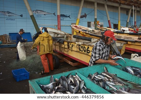 VALPARAISO, CHILE - JULY 1, 2016: Fishermen cleaning and tidying fishing nets and getting the catch ready for sale in the fishing harbour in Valparaiso, Chile.
