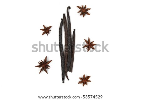 Vanilla beans and anise isolated on white - stock photo
