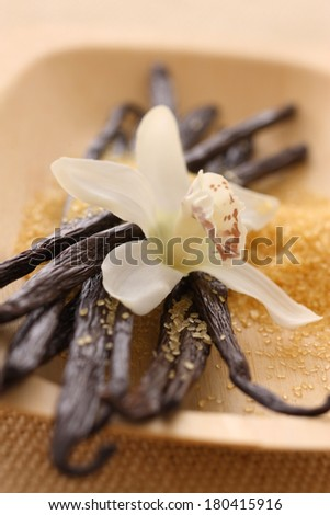 Vanilla Beans, Orchid and Raw Sugar - stock photo