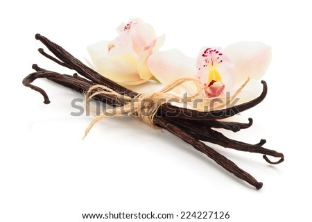 Vanilla pods and orchids isolated on white background. - stock photo