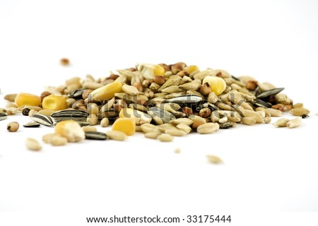 Varaiety of grains, including corn and sunflower seeds, isolated on white - stock photo