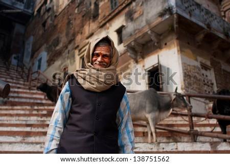 VARANASI, INDIA - JANUARY 1: Elderly man walks his cows on a steep street of the oldest city in the world on January 1, 2013. Varanasi urban agglomeration had a population of 1,435,113. - stock photo