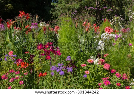 variety of flowers in vivid colors in a flowerbed in the park - stock photo