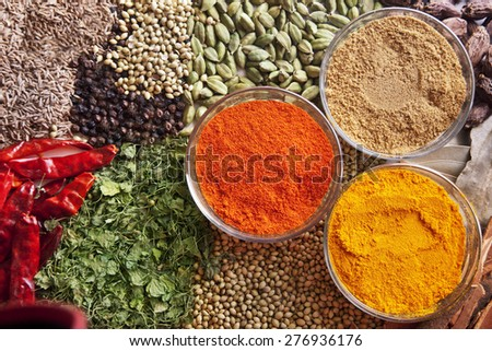 Variety of Indian spices - stock photo