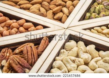 variety of nuts (pecan, cashew, almond, pine, pistachio, peanut) in a geometrical wood tray - stock photo