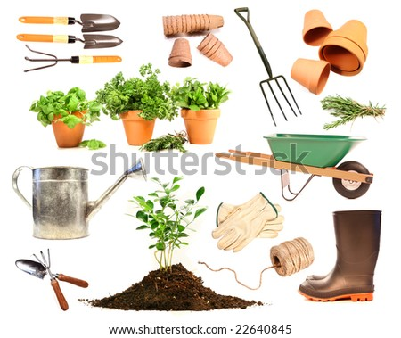 Variety of objects for spring planting on white background - stock photo