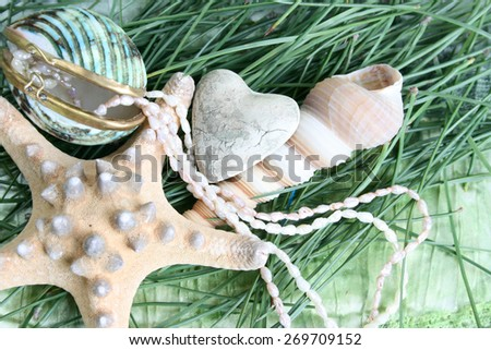 Variety of seashells and jewelery on green background - stock photo