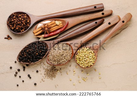 Variety of spices on wooden spoons,ingredients for garam masala , indian spice mix - stock photo