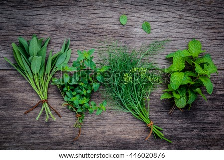 Various aromatic herbs and spices from garden fennel ,rosemary,oregano, sage and green mint set up on old wooden background .