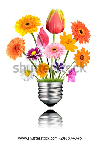Various Colorful Flowers Growing out of Light Bulb Screw Isolated on White Background. Light bulb has a reflection - stock photo