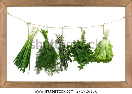 various fresh herbs hanging isolated on white background - stock photo