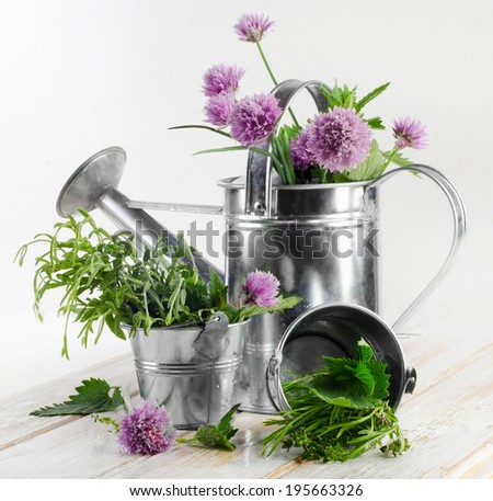 Various fresh herbs on a wooden table . - stock photo