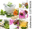 Various homeopathy related images in a collage - stock photo