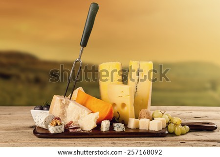 Various kind of cheese served on wooden table with vineyard on background - stock photo