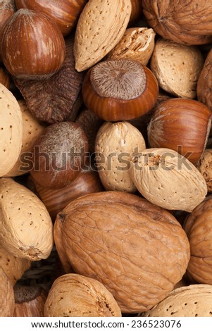 Various kinds of nuts in shells, brazil nuts, almonds, hazelnuts and walnuts. - stock photo