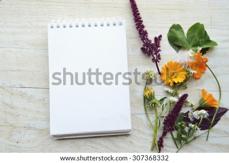 Various medicinal plants on wooden background  - stock photo