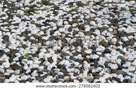 various pebble stones texture - stock photo