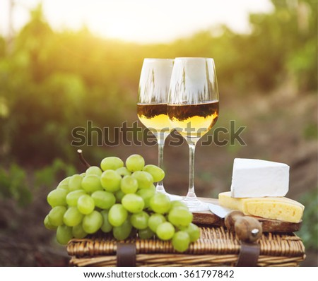 Various sorts of cheese, grapes and two glasses of white wine in the vineyard - stock photo