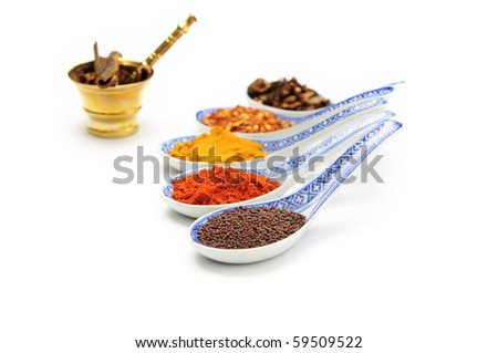 Various Spices on a white background - stock photo