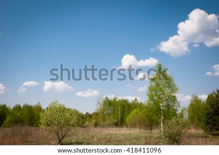 Various trees in the early spring on a background of blue sky with clouds - stock photo