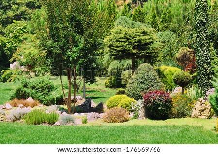 Various Type Of Plants Growing In The Garden  - stock photo