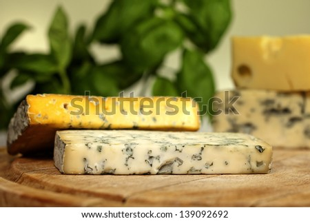 Various types of cheese  closeup