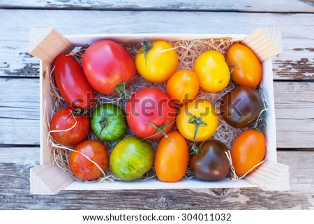 Various types of french tomatoes: yellow, lot of red and green tomatoes in a wooden basket on wooden table - stock photo