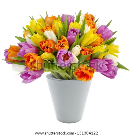 Vase with colorful tulips isolated on a white background