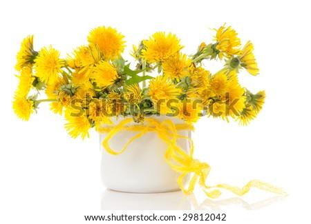 vase with dandelions - stock photo
