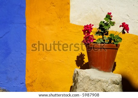 Vase with flowers against a colorful wall - stock photo