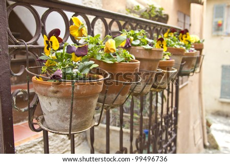 Vases on a balcony - stock photo