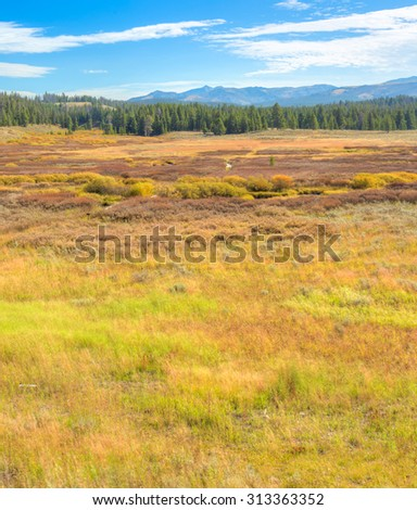 Vast and colorful landscape in Yellowstone National Park. - stock photo