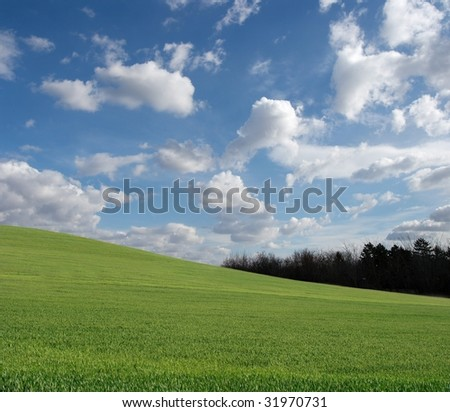 Vast green field with blue sky and white clouds