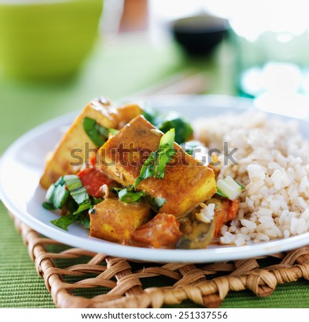 vegan tofu curry with brown rice - stock photo