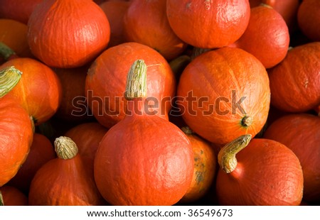 Vegetable background. Small pumpkins