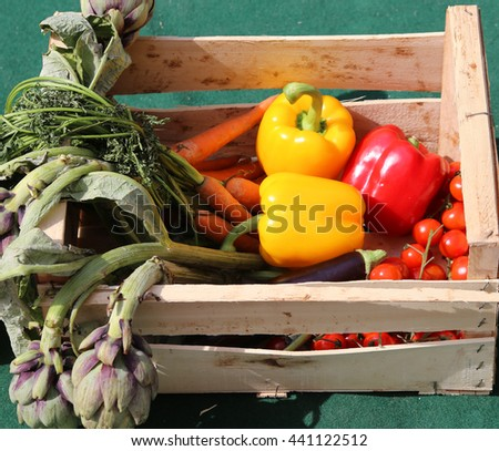 vegetable box with peppers and artichokes just harvested from the garden - stock photo