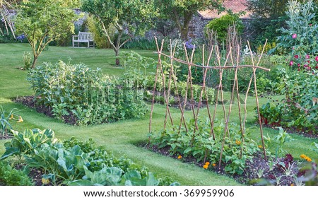Vegetable Tree Stock Photos Images Pictures Shutterstock