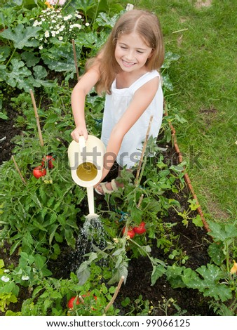 Vegetable Garden   Lovely Girl Watering Vegetables In The Garden