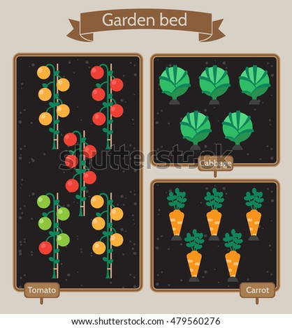 vegetable garden planner flat design beds with cabbage carrots tomatoes