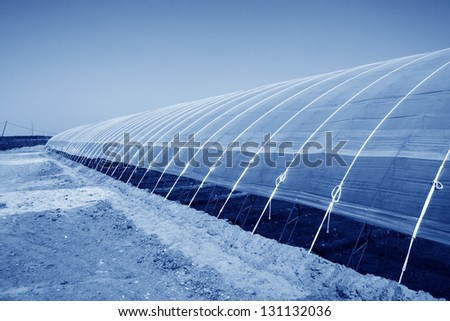 Vegetable greenhouses under the blue sky, Luannan County, Hebei Province, China