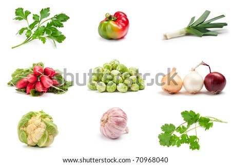 vegetable on a white background: cauliflower, peppers, brussels sprouts, onions, garlic, leeks, radishes, parsley, cilantro - stock photo