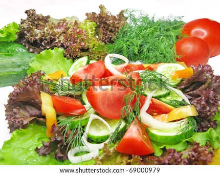 vegetable salad with tomato and cucumber