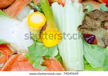 Vegetable scraps suitable for compost pile - stock photo