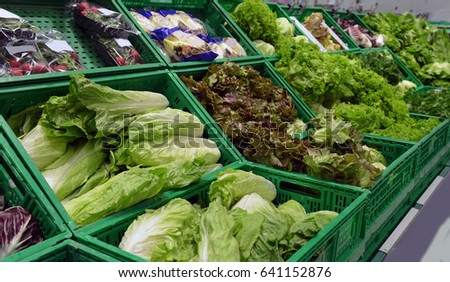 Vegetable showcase with cabbage and salad in the supermarket