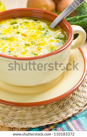 Vegetable soup - stock photo