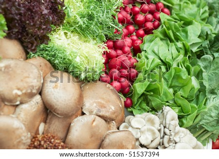 Vegetables and various mushrooms in a supermarket, focus on radish - stock photo