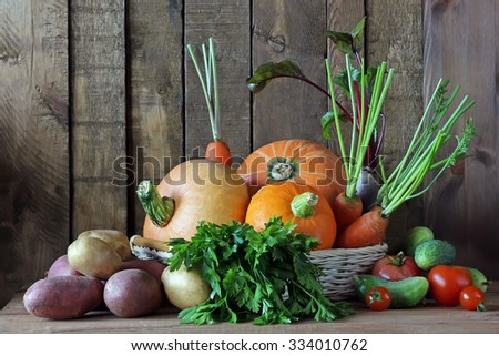 Vegetables in a basket: cucumber, tomato, cherry tomato, beet, pumpkin, potatoes, parsley, carrots. A background from boards. - stock photo