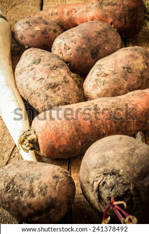 Vegetables: potatoes, carrots, daikon radish, beet. Farm crop for the background. - stock photo